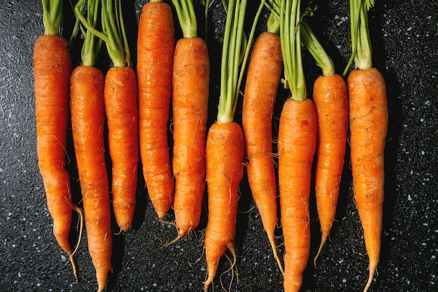 Carrot with tops in row