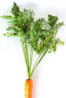 白地に緑のトップスのニンジン。新鮮な野菜を収穫します。農業、農業の産物。