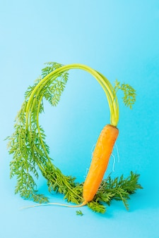 Carrots with tops on a blue space. vegetable crops concept, levitation effect. minimalism, copy space.