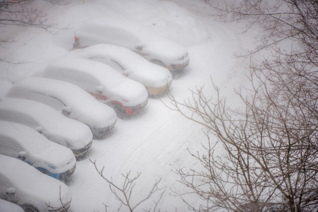 Cars covered in snow on a parking lot