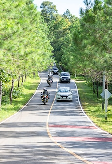 Cars and motorcycles on asphalt road that is hilly and curved with pine trees on both sides of the road