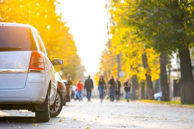 밝은 가을 날 도시 거리 쪽에 차들이 줄지어 주차되어 있습니다.