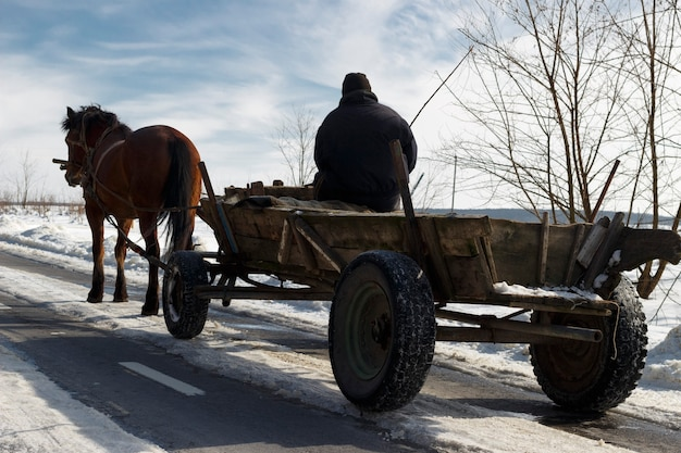 The cart with horse and drover ploughboy