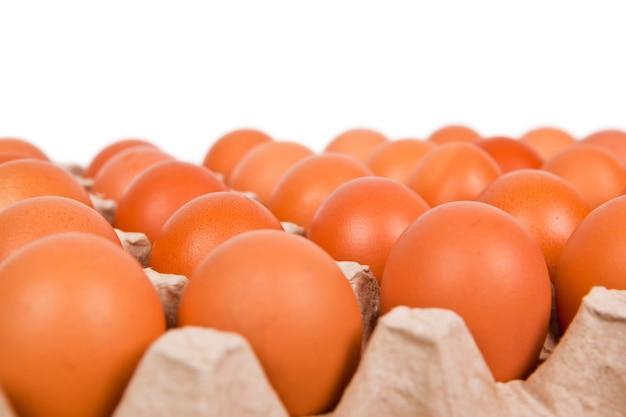 新鮮な茶色の卵のカートン