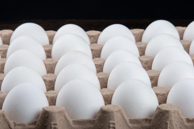白い鶏の卵とカルトゥーシュ。