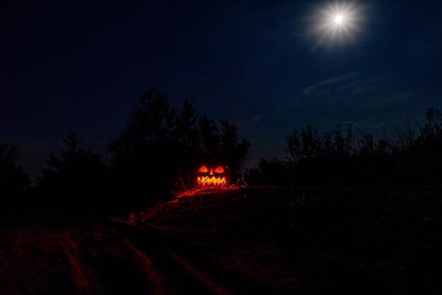 キャンドルが燃える彫刻が施されたハロウィーンのカボチャのジャック・オー・ランタンが暗闇の中で輝きます。不気味な風景