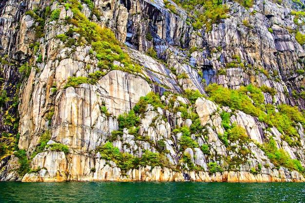 岩と北の木の刻まれた表面