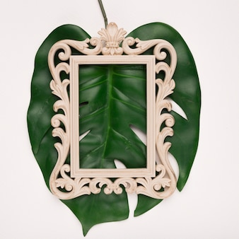 Carving rectangular wooden frame on green single monestra leaf against backdrop