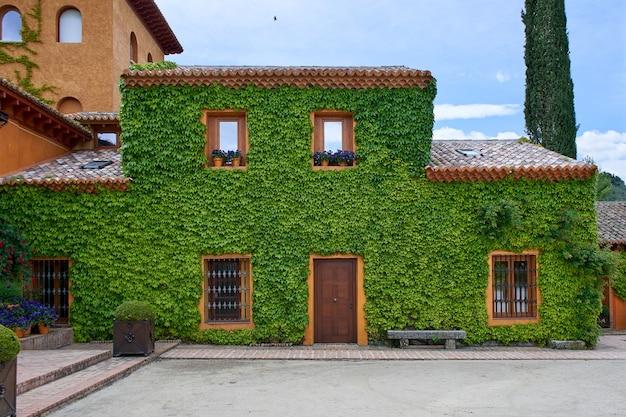 Casa con muro cubierto de enredadera