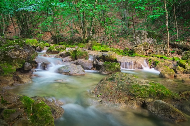 カスケードは苔むした岩の上に落ちます。山川