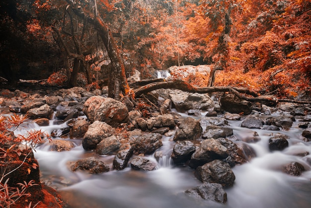 Cascade motion waterfall in autumn