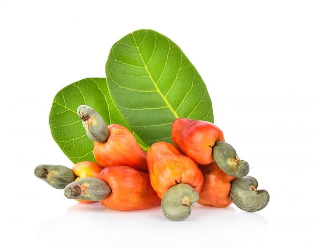 Cashew fruit isolated on white