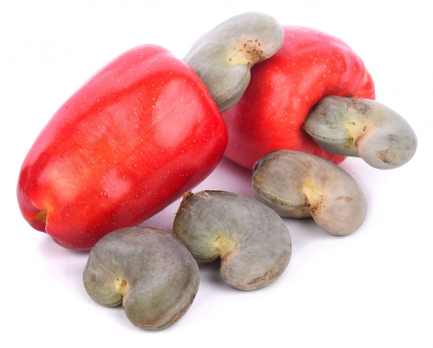 Кешью или caju fruit на белом фоне