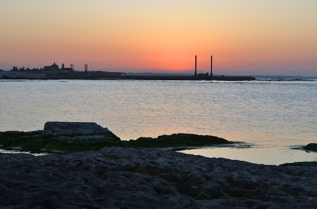 Caspian sea shore with a plant on a summer evening at sunset