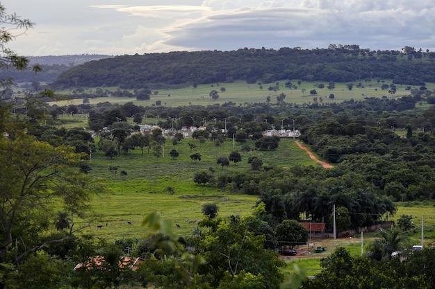 Кассиландия, мату-гросу-ду-сул, бразилия - 01 26 2021: панорама муниципального кладбища кассиландии во второй половине дня