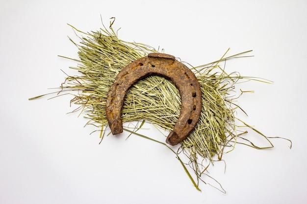 Cast iron metal horseshoe on hay, isolated on white background