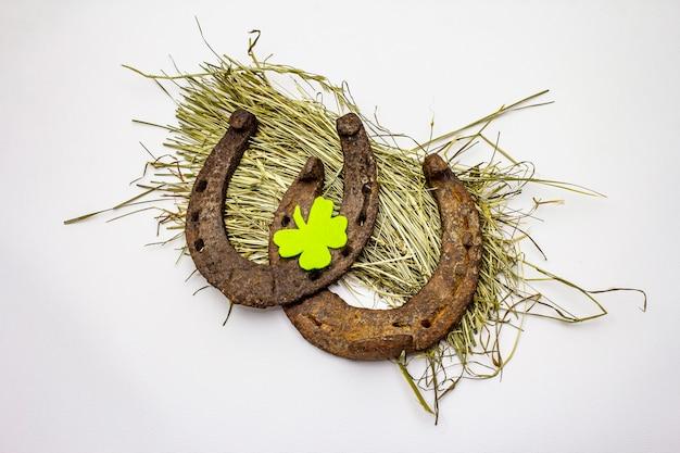 Cast iron metal horseshoes on hay, isolated on white background, felt clover leaf