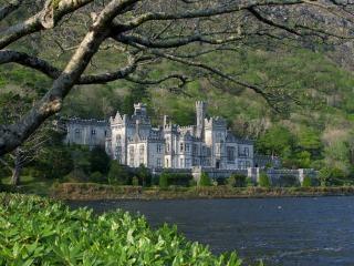 Castle  mention