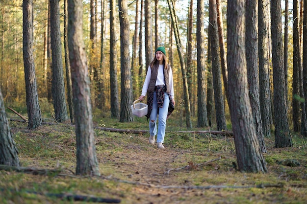 Casual woman walk in autumn forest searching mushrooms in sunny pine woods fall season leisure