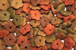 Cat food, pet