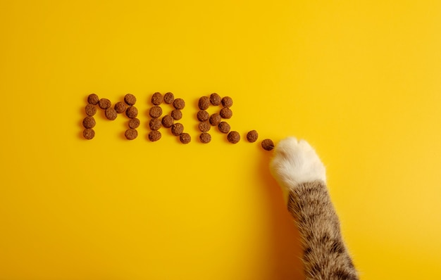 Cat food on yellow background laid out in word of cat purring, mrr top view, funny cat paws steals food