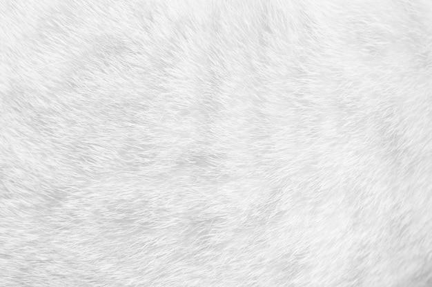 고양이 모피는 배경 질감을 닫습니다. 흰색 추상 줄무늬입니다.