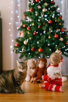 Кошка сидит перед елкой, пока ребенок тянется за елочным орнаментом. фото высокого качества