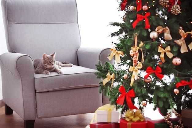 Кошка лежит в кресле возле красивой елки