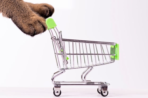 Cat paws pushing empty shopping cart on white background, shopping concept, products for cats, empty space in cart, side view, grocery basket