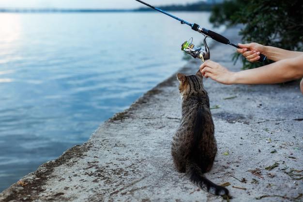 Кошка сидит и ждет на берегу, рыбак с колесом удочки