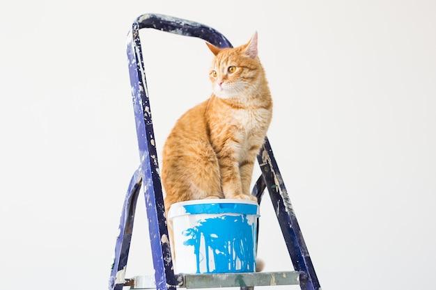 고양이는 계단 사다리에 앉는다.
