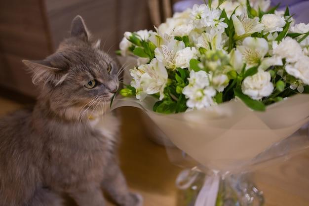 Кошка нюхает дома букет свежих весенних цветов с лютиками. уютная и нежная открытка.
