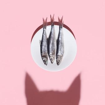 猫対魚。好奇心が強い猫の影とピンクの銀魚のプレート。ハードライト。好奇心と食べ物のコンセプト