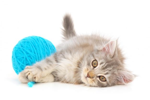 Кот с клубком пряжи