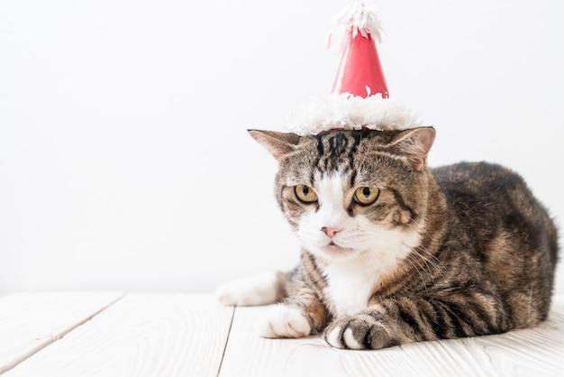 Кот с праздничной шляпой
