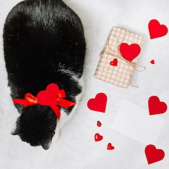 Cat with ribbon near present box and ornament hearts