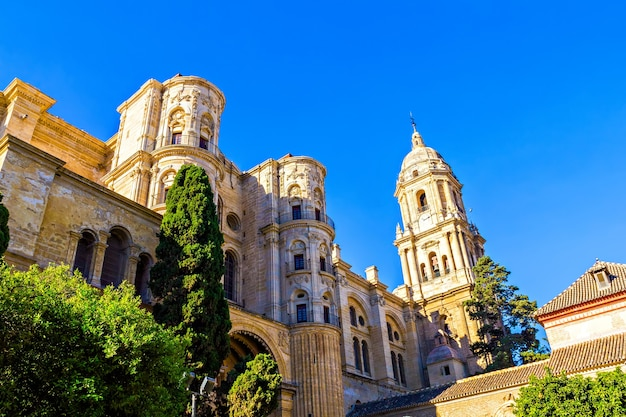 Cathedral in malaga andalusia spain