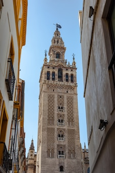 The cathedral of sevilla and the giralda