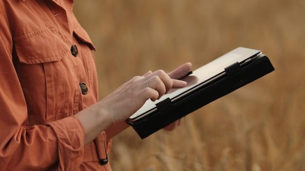 백인 농학자가 곡물 밭을 확인하고 태블릿 스마트폰에서 클라우드로 데이터를 보냅니다...