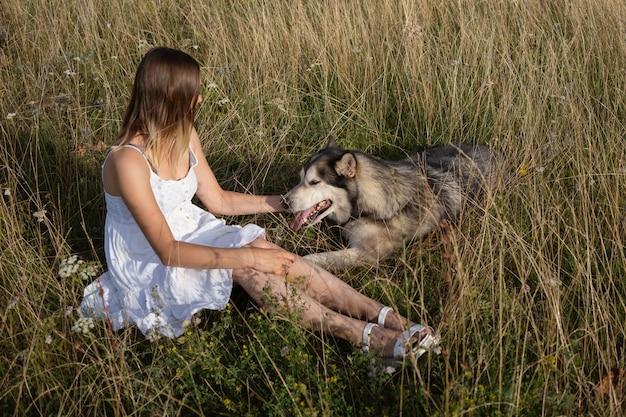 Кавказская белокурая женщина в белом платье домашнее животное и сидит с собакой аляскинского маламута в летнем поле. чесать собаке уши. вид сверху. любовь и дружба между человеком и животным.