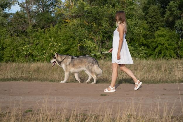 Кавказская белокурая женщина в белом платье гуляет с собакой аляскинского маламута на проселочной дороге. любовь и дружба между человеком и животным.