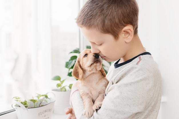 Caucasian boy holding english cocker spaniel puppy