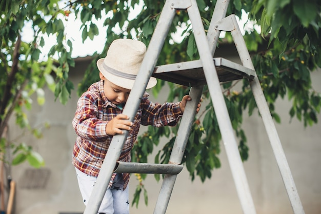 Caucasian boy with hat using stairs to eat cherry in the garden near the tree