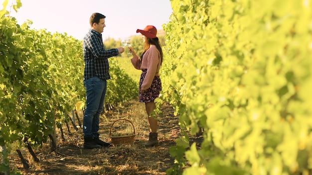 ブドウ園でグラスをチリンと鳴らし、ワインを味わう白人カップル。ドリースライドショット。