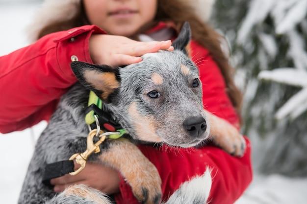 Кавказская девушка в красной куртке и меховой шапке, держащей и питомца целитель зимой. австралийская овчарка. фото высокого качества