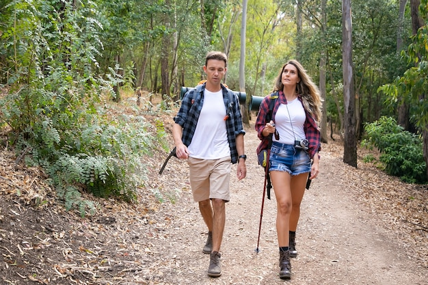 Caucasian hikers walking or trekking on forest path surrounded with mountain trees. pretty woman and handsome man hiking together through woods. tourism, adventure and summer vacation concept