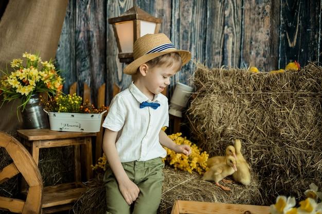 Кавказский маленький мальчик в соломенной шляпе сидит на стоге сена с утятами в сарае. пасхальные украшения