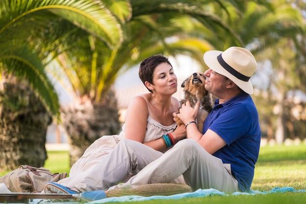 小さな素敵な美しい子犬シェットランド犬と遊ぶ屋外レジャー活動の白人の中年陽気なカップル。緑の芝生の上に座って、一緒に楽しんでいます。キスとテンダーン