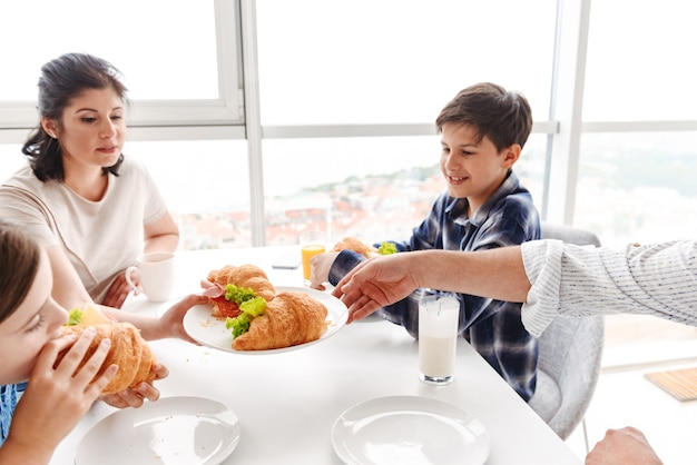 Caucasian people parents with children 8-10, having breakfast together in bright kitchen at home and eating croissant sandwiches