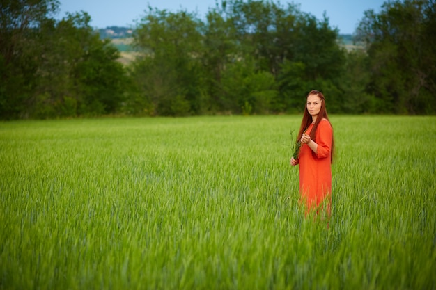 Caucasian red-haired woman in a red dress walking on a farm field with wheat at sunset on a summer day